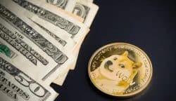 什么是狗币